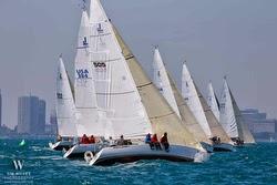 J/105s sailing Chicago