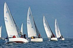 J/24s sailing off Italy
