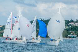 J/22s sailing Jamaica, Montego Bay