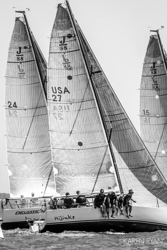J/88 sailing at Charleston Race Week
