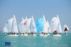 J/24s sailing downwind on Lake Balaton, Hungary