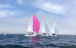 J/70s sailing under spinnaker off California