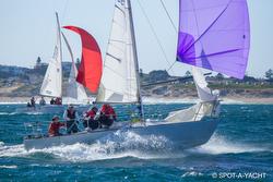 J/24 sailing in Australia