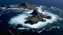 Farallones islands/ rocks