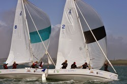 J/80 sailboats- match racing in Ireland