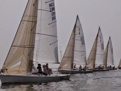 J/80s sailing off Toronto, Canada