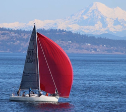 J/92 sailing Pacific Cup race