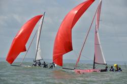 J/80 sailing league off Le Havre, France