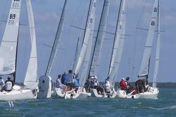 J/70s sailing off Miami in Bacardi at mark