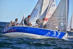J/24 Bruschetta- Brazil sailing team- Mauricio Santa Cruz