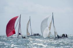 J/80 sailing EDHEC Cup