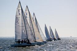 J/80 Netherlands sailing