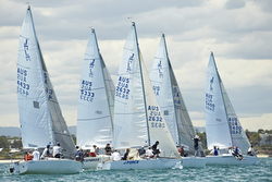 J/24 fleet starting off Australia