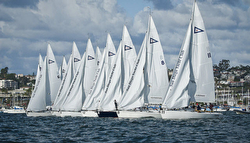 J/105s sailing start at Lipton Cup