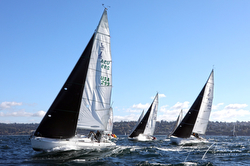 J/105s sailing on Puget Sound