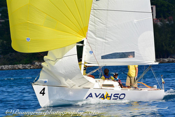 Jammin' J/22 Jamaica Regatta Preview
