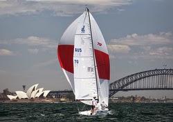 J/70 007 sailing Sydney, Australia