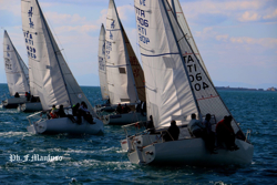 J/24s sailing Italian winter series