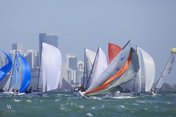 J/70s sailing fast off Miami in Bacardi