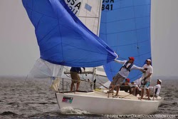 J/24 sailing downwind under spinnaker