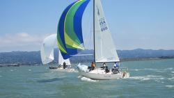 J/24s sailing Berkeley Circle