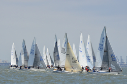 J/24s sailing at USA Nationals in San Francisco