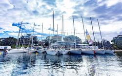 Australian J/24s off Cronulla Sailing Club, Sydney