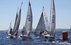 J/24 Italy sailing