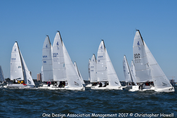 J/70s sailing upwind on Tampa Bay
