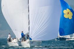 J/105s sailing San Diego