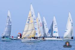 J/24s sailing Trofeo Academia Navale, Livorno, Italy