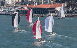 J/105s sailing Rolex Big Boat Series- St Francis YC