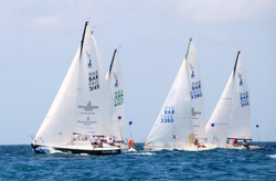 J/24s sailing off Barbados