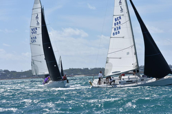 J/105s sailing Bermuda Great Sound