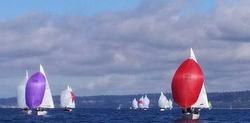 J/24s sailing off Seattle, WA
