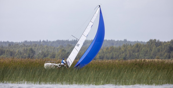 J/70 Sweden sea grass