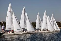 J/22 sailboats- sailing Mallory Cup