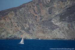 J/120 Julia sailing Transpac Race