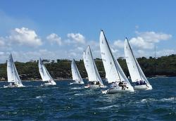 J/70 sailing Australia