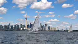 J/80 sailing off Toronto, ONT