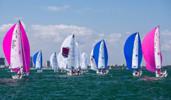 J/70s sailin on Biscayne Bay