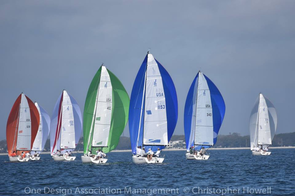 J/70s sailing on Tampa Bay