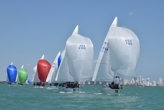 J/24s sailing off Miami, FL