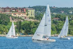 J/22s sailing Jamaica regatta