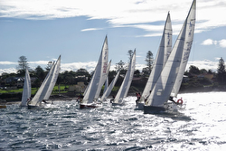 J/24s sailing in Australia