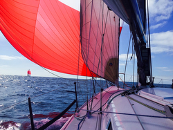 J/125 sailing Newport Beach to Cabo San Lucas Race
