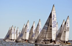 J/24s sailing off start on Tampa Bay, FL