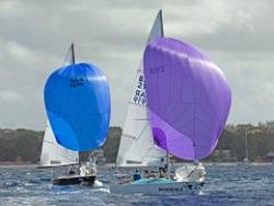J/24s sailing
