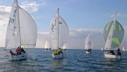 J/24s sailing Italian Winter series