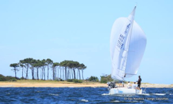 J/24 sailing with spinnaker off Punta del Este